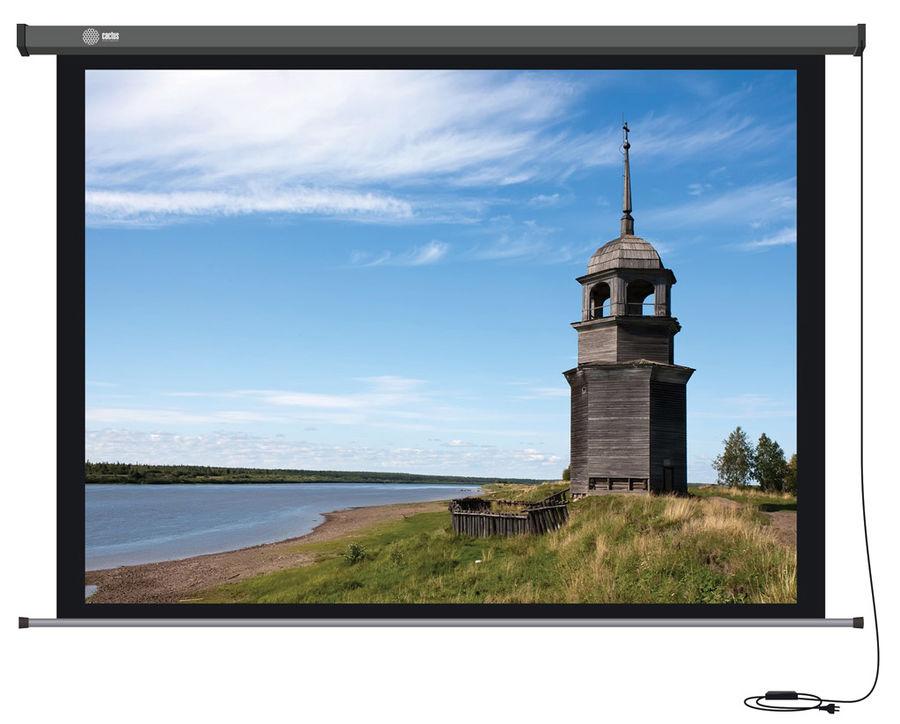 Экран для проектора Cactus Professional Motoscreen CS-PSPM-152X203, Grey