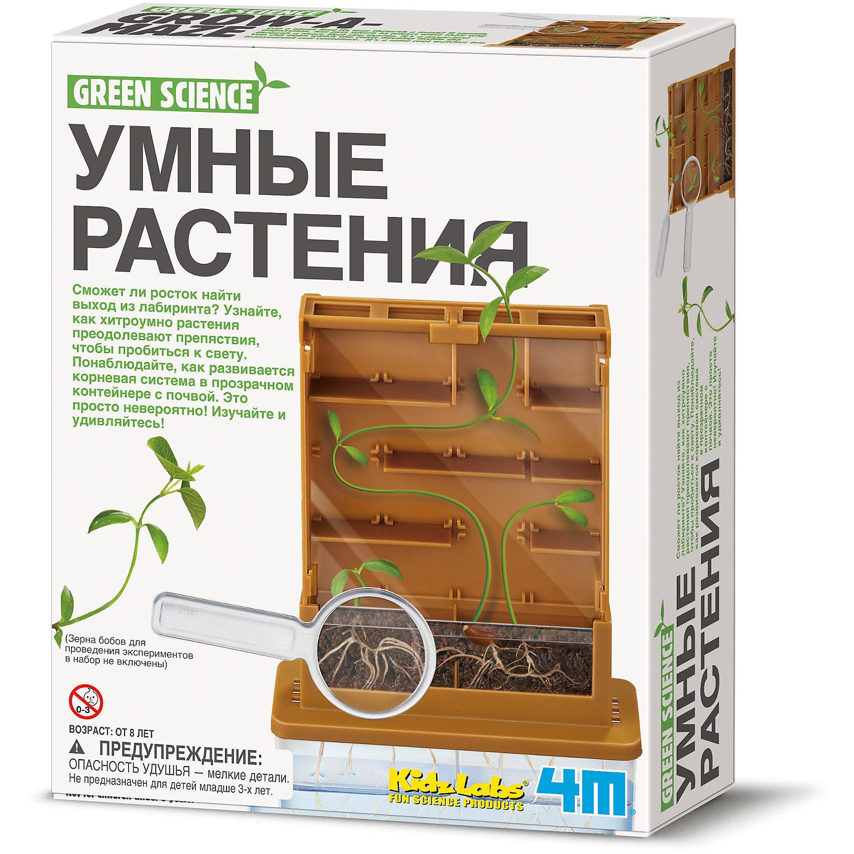 4M 00-03352 Умные растения