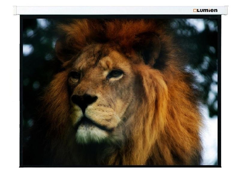 Экран для проектора Lumien Master Control LMC-100128