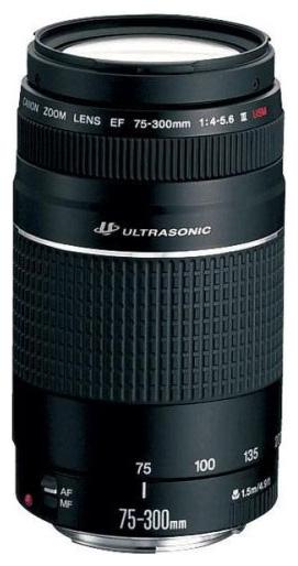 Canon EF 75-300mm f/4-5.6 III USM (6472A012) black - телеобъектив Zoom; ФР 75 - 300 мм; ZOOM 4x • F4 - F5.60 • Автофокус есть.