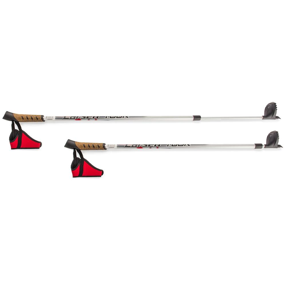 Палки лыжные Larsen Tour раздвижные 90 - 130см